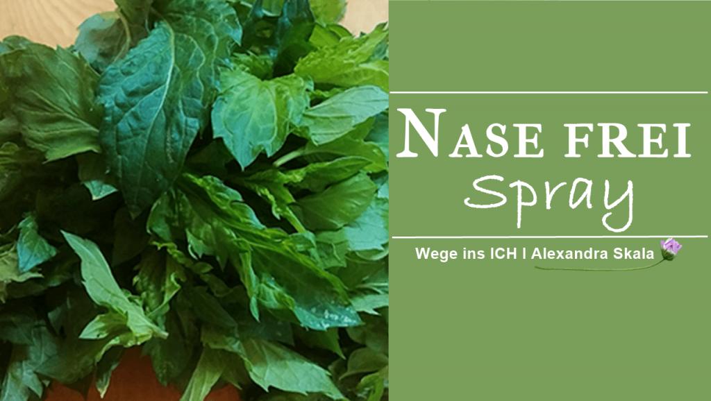 Nasefrei Spray-Minze