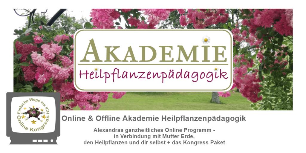 Akademie und Kongress Paket Angebot1
