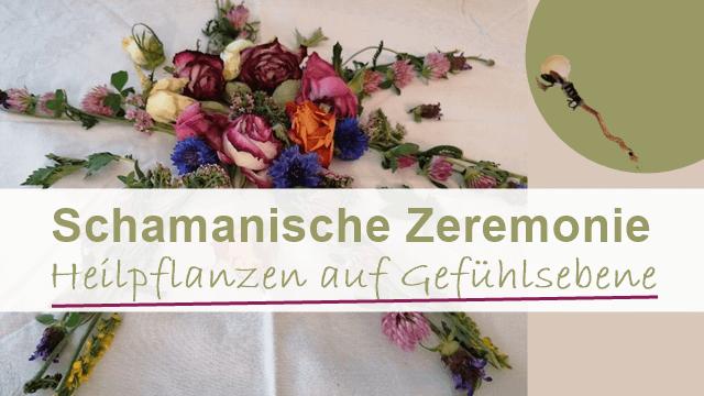 Veranstanltung Schamanische Zeremonie Heilpflanzen auf Gefühlsebene