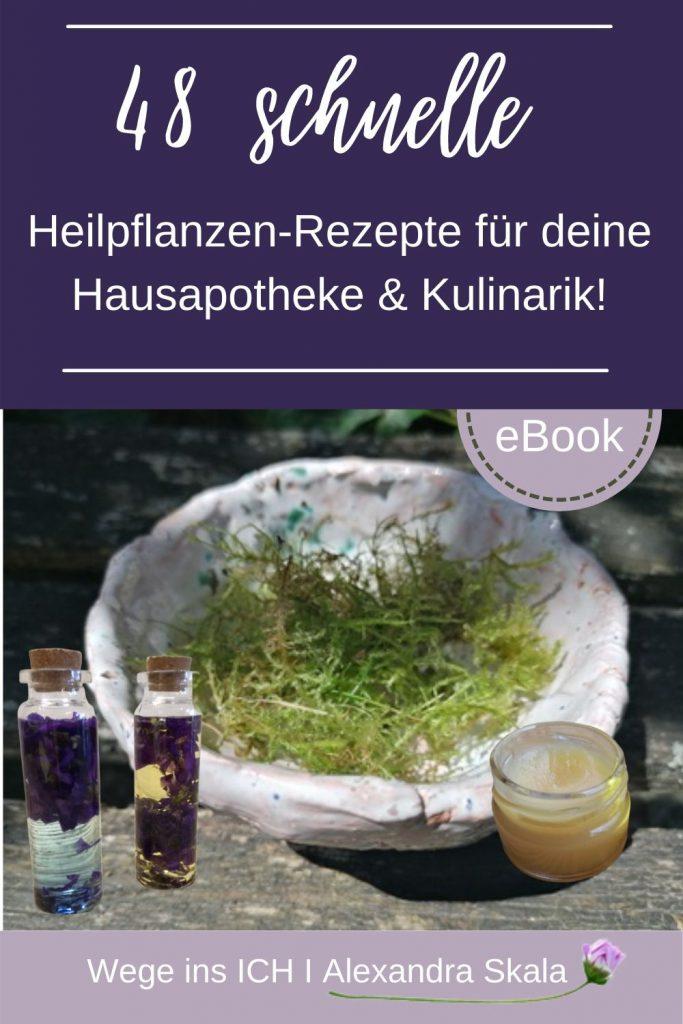 48 Heilpflanzen-Rezepte für deine Hausapotheke & Kulinarik!
