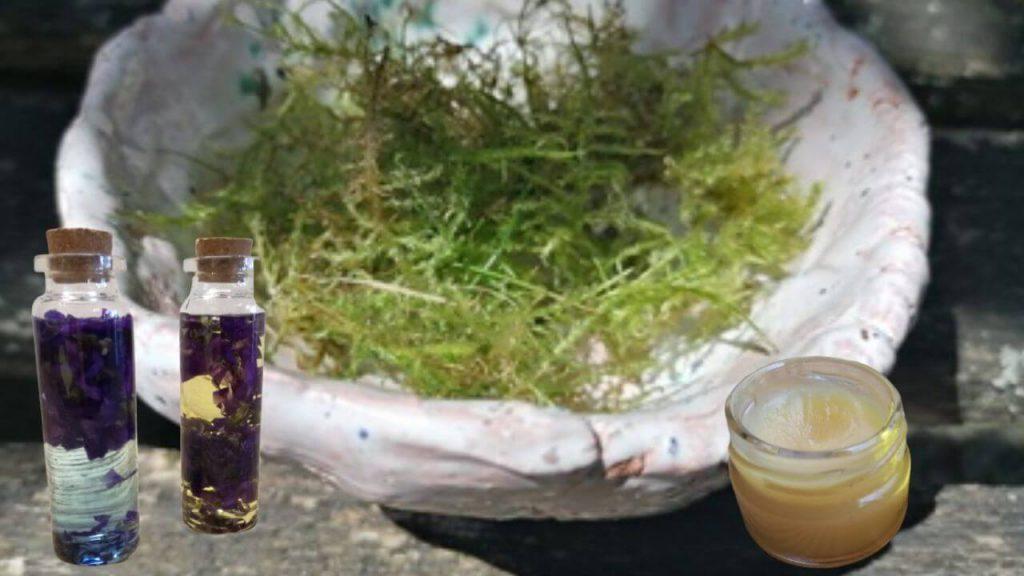 Moossalbe selbermachen