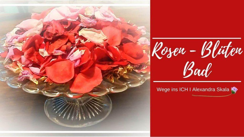 Rosenblütenblätter für das Bad